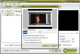 Daniusoft DVD to BlackBerry Converter - Convert DVD to BlackBerry AVI, DVD to BlackBerry Converter
